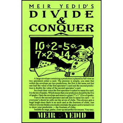 Divide and Conquer by Meir Yedid