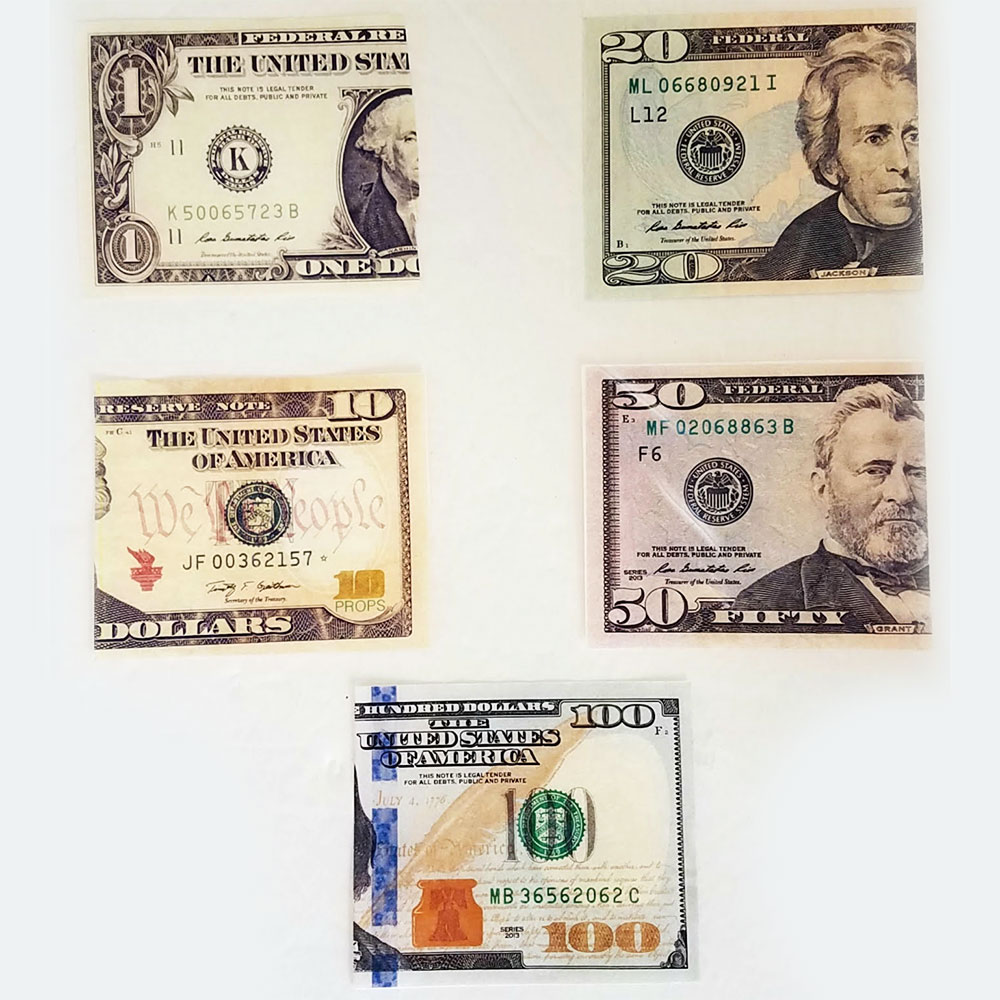 Flash Dollar Bills - US $1, $10, $20, $50, $100 - Pack of 10