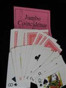 Jumbo Coincidence - Bicycle