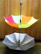 Cane to Twin Parasols Umbrella (FT)